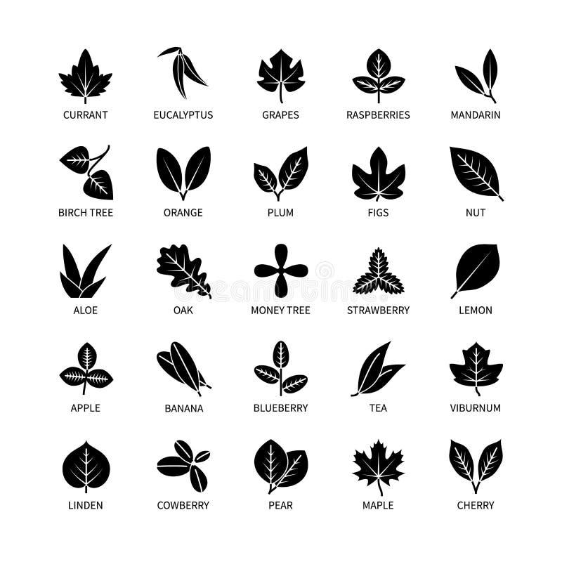 Значки полезного силуэта листьев линейные вектор анализа vegan установил элементов дизайна листают еда ягоды куста дерева здорова бесплатная иллюстрация