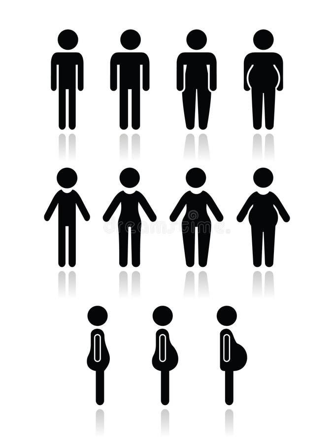 Значки типа телосложения человека и женщин - тонкие, тучный, брюзгливый, тонкий, иллюстрация вектора