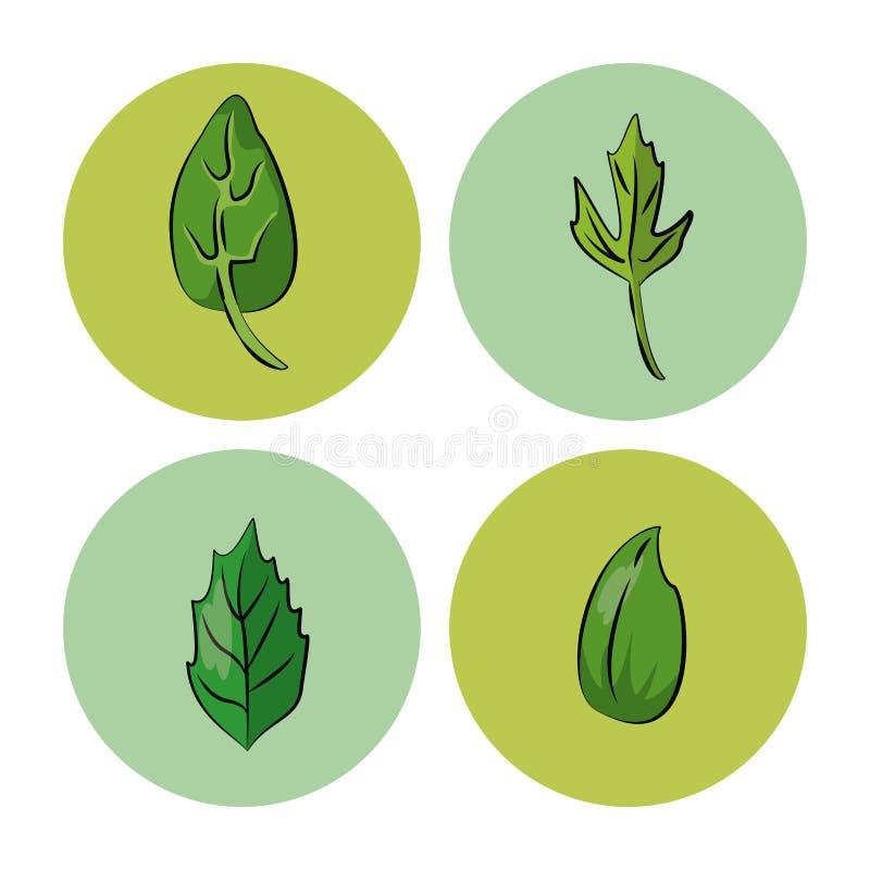 значки трав и специй иллюстрация штока