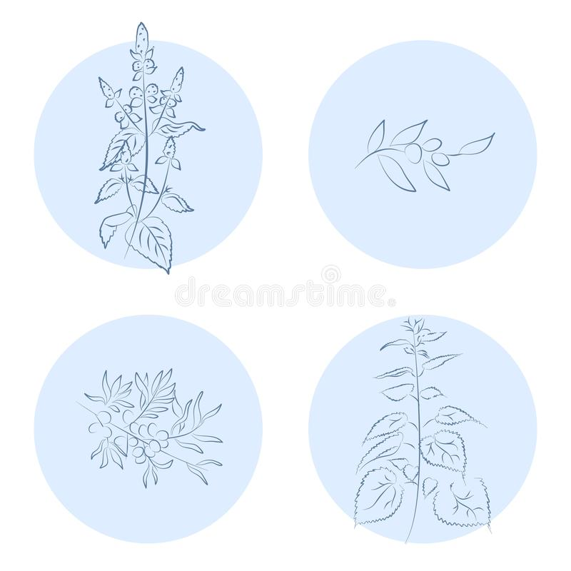 Значки трав бесплатная иллюстрация