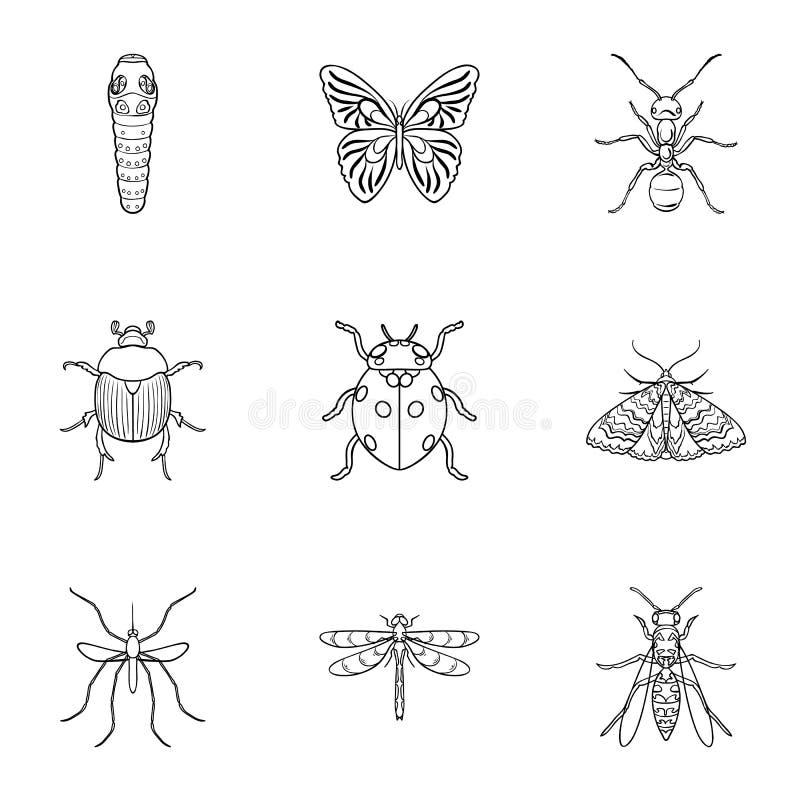 Значки установленные насекомыми в стиле плана Большое собрание иллюстрации запаса символа вектора насекомых иллюстрация вектора