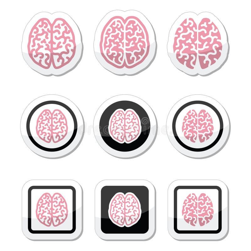 Значки человеческого мозга установили - разум, концепцию творческих способностей бесплатная иллюстрация