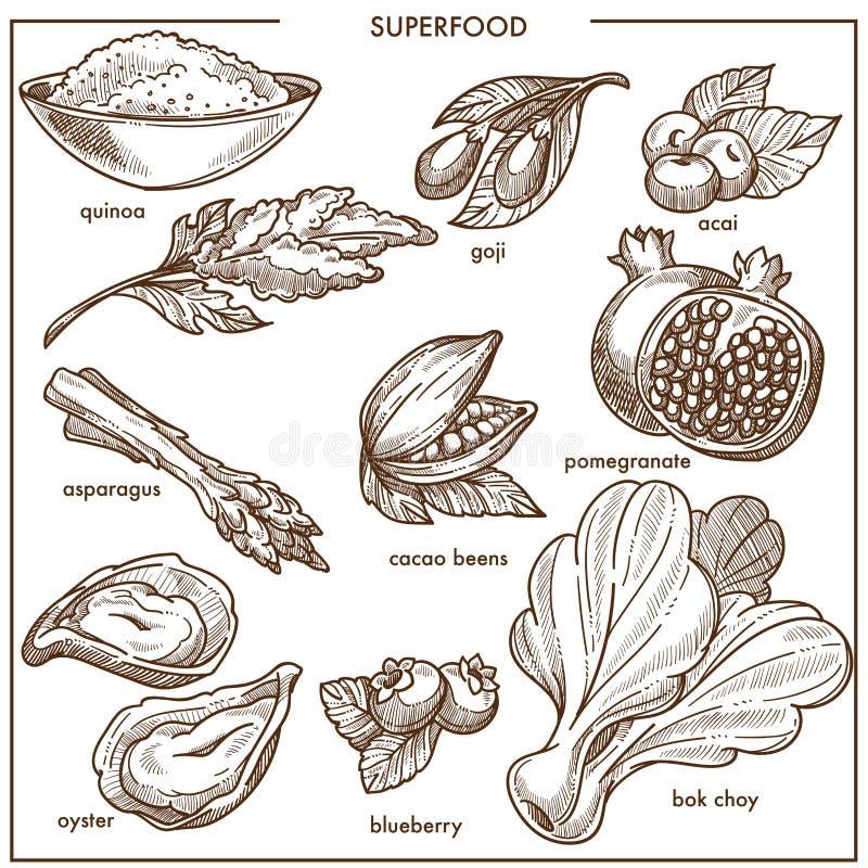 Значки ягода, фрукты и овощи, семена фасоли или морепродукты эскиза еды здорового питания Superfood бесплатная иллюстрация