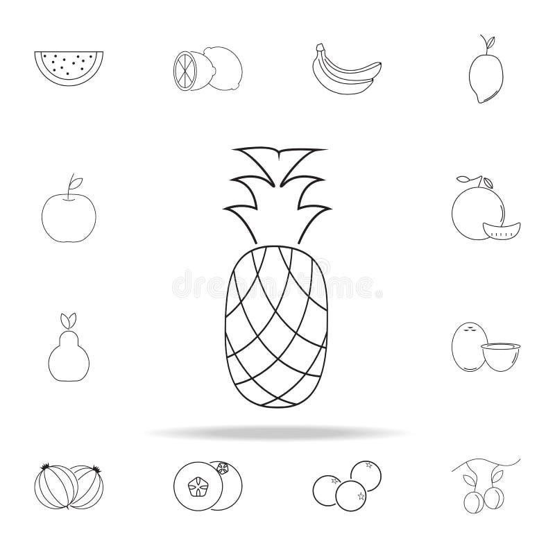 Значок ананаса Комплект значков плодоовощ всеобщий для сети и черни иллюстрация штока