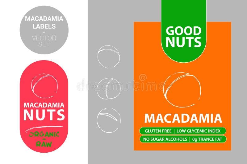 Значок гайки макадамии с текстом: клейковина свободная, низкий гликемический индекс, отсутствие алкоголей сахара, сала транса 0g  иллюстрация вектора