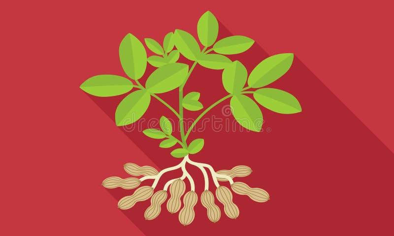 Значок завода арахиса, плоский стиль бесплатная иллюстрация