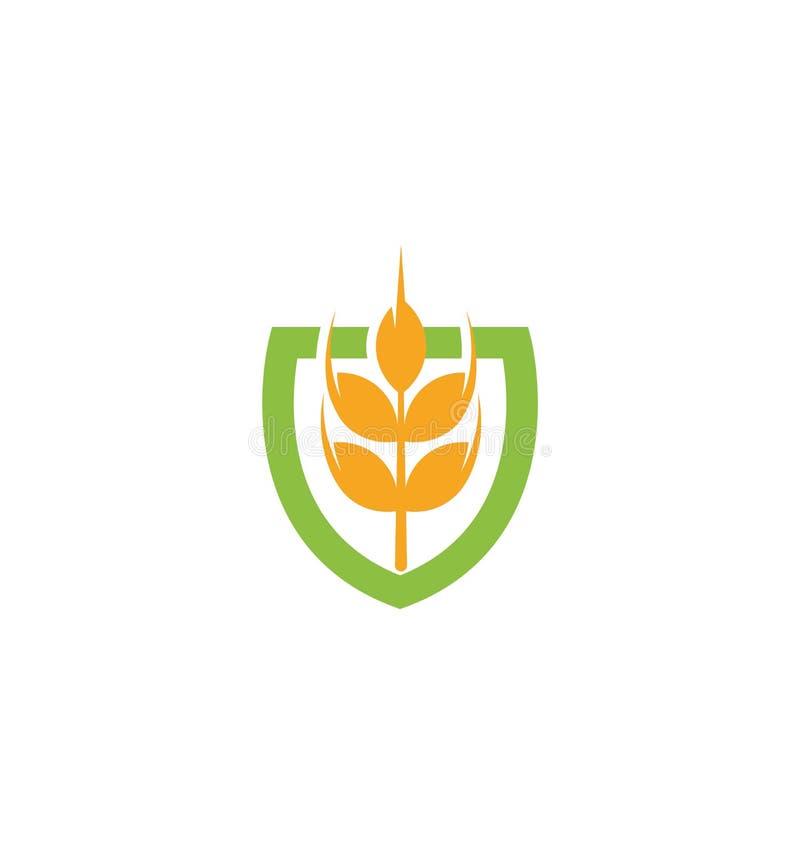 Значок зерна вектора пшеницы изолировал логотип абстрактного оранжевого уха пшеницы цвета hearldic Логотип элемента природы аграр иллюстрация штока