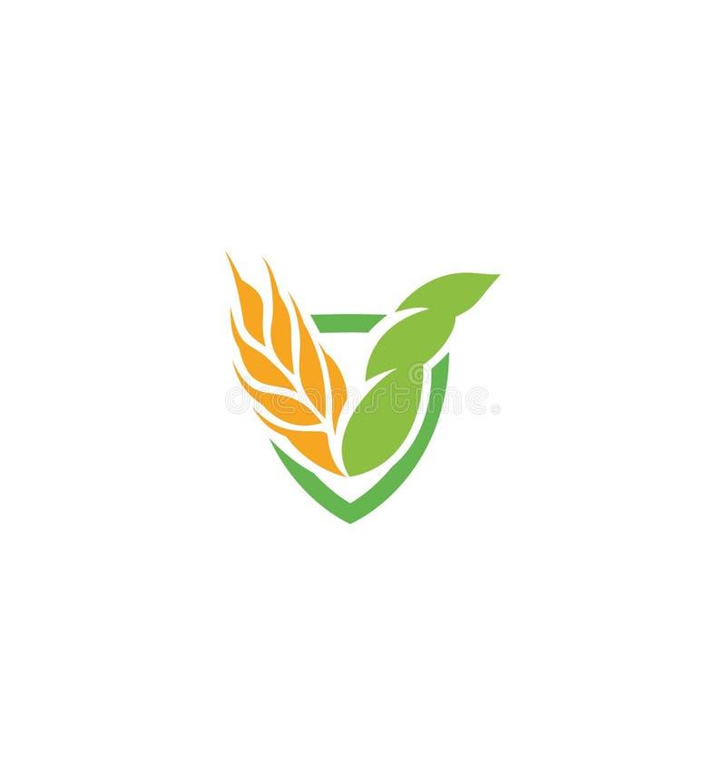 Значок зерна вектора пшеницы изолировал логотип абстрактного оранжевого уха пшеницы цвета hearldic Логотип элемента природы аграр иллюстрация вектора