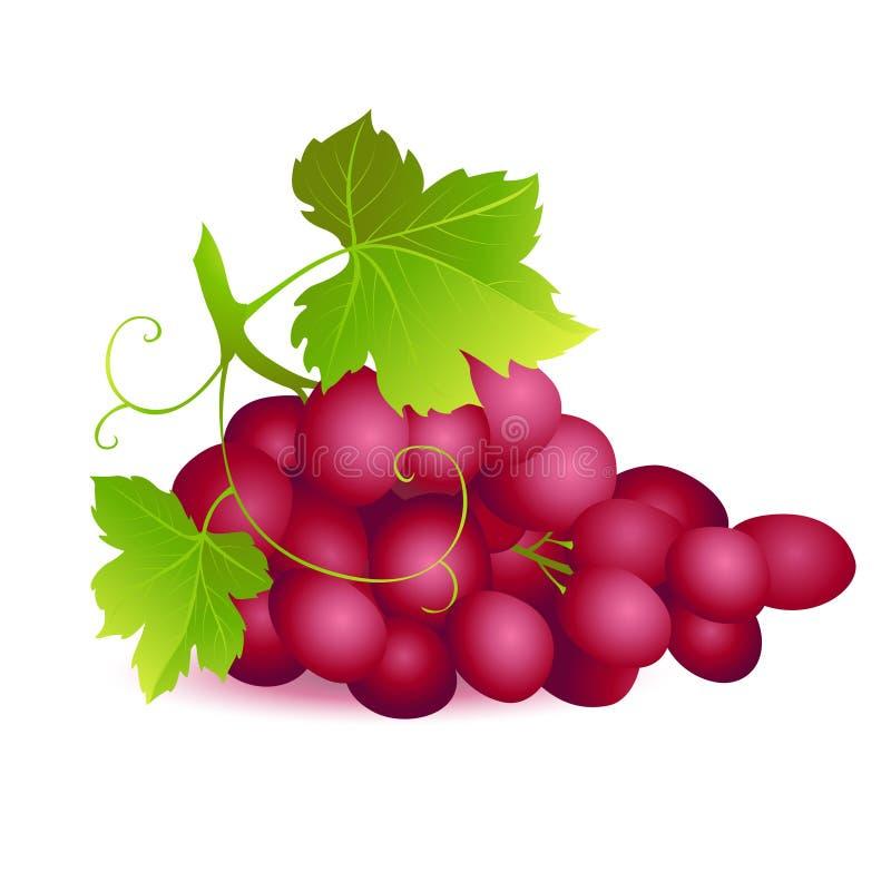 Значок зрелой виноградины лета с 2 зелеными листьями иллюстрация вектора