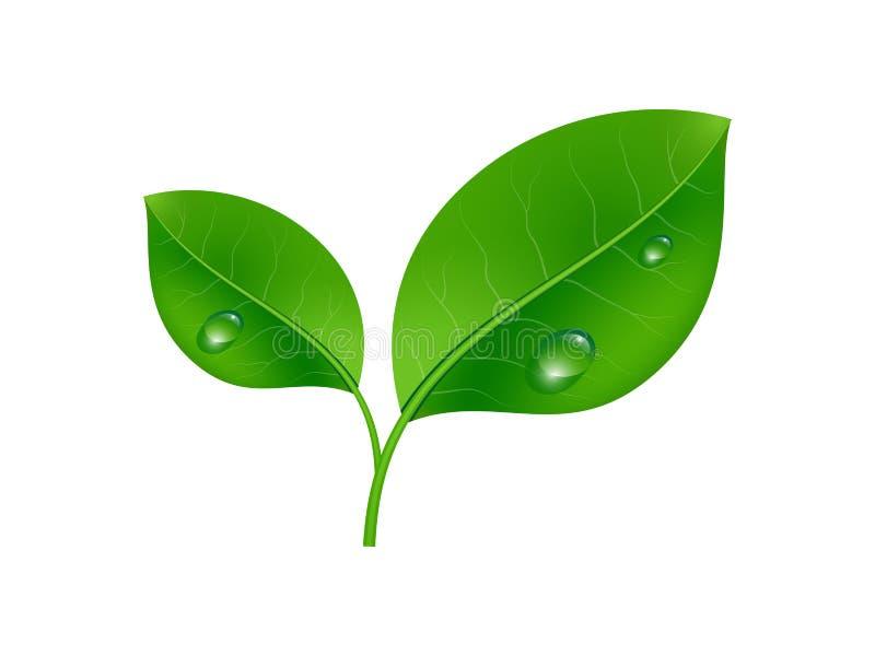 Значок концепции экологичности иллюстрация штока