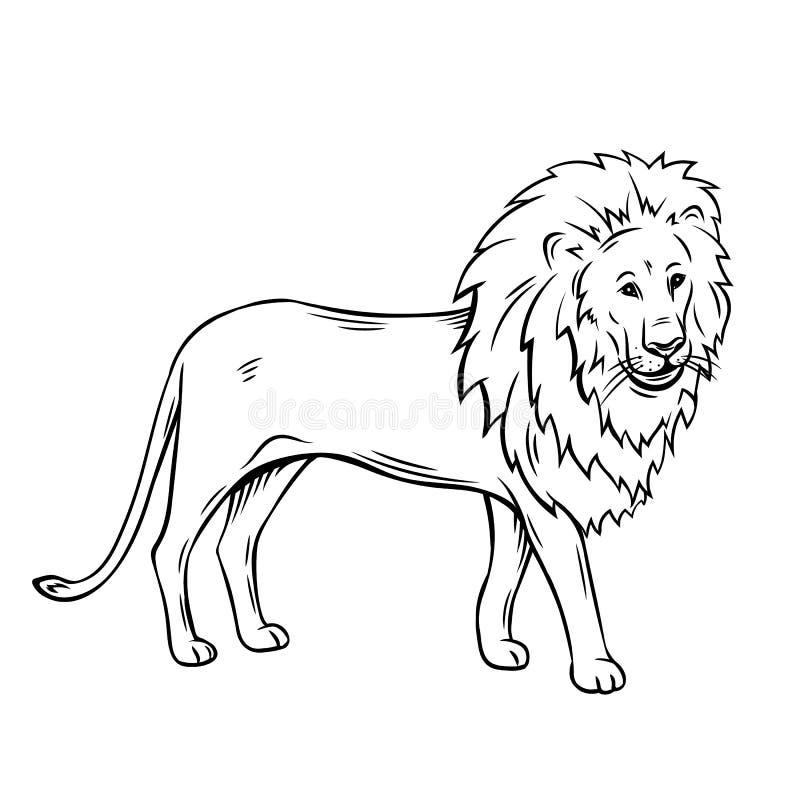 Значок льва плана иллюстрация штока