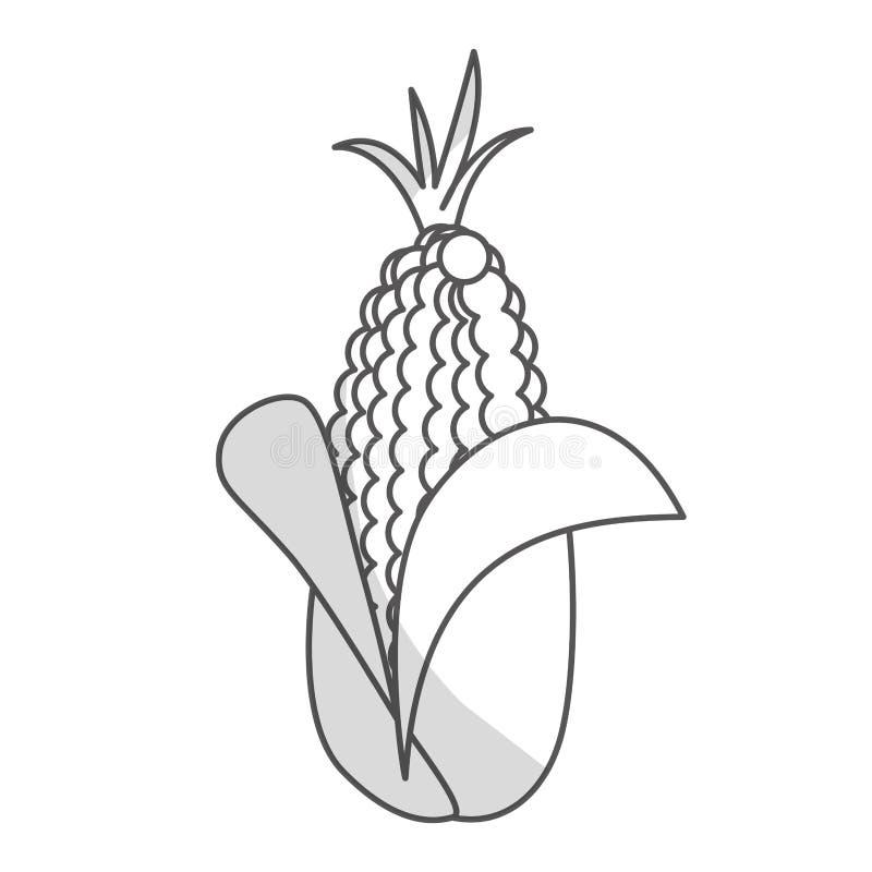 Download Значок овоща мозоли иллюстрация вектора. иллюстрации насчитывающей элемент - 81802983
