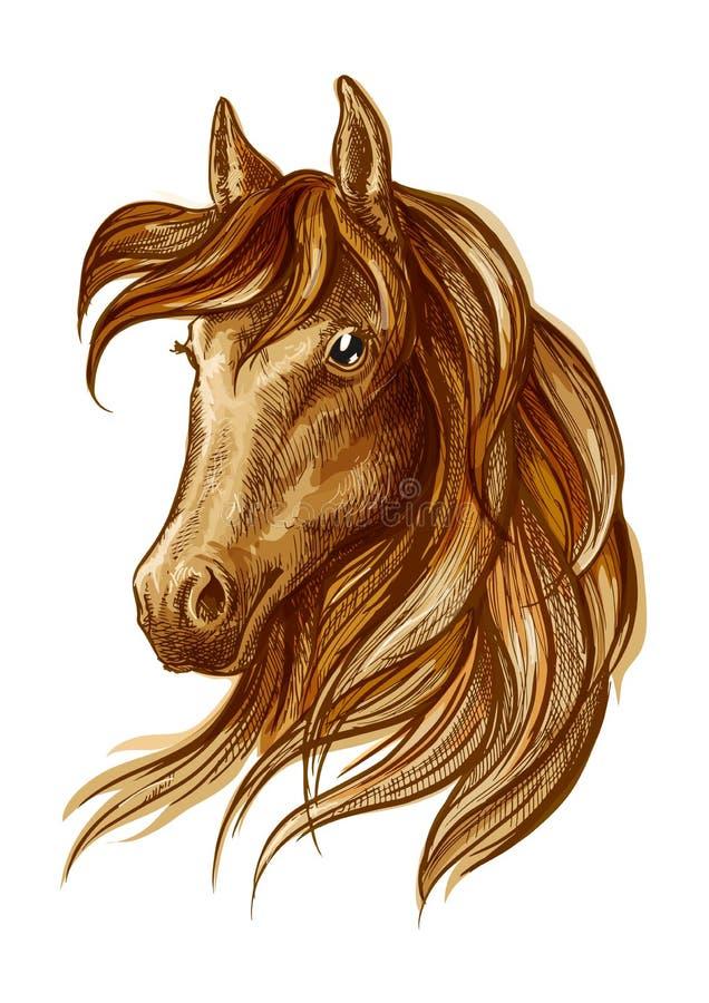 Значок лошади жеребца Брайна для конноспортивного дизайна иллюстрация вектора