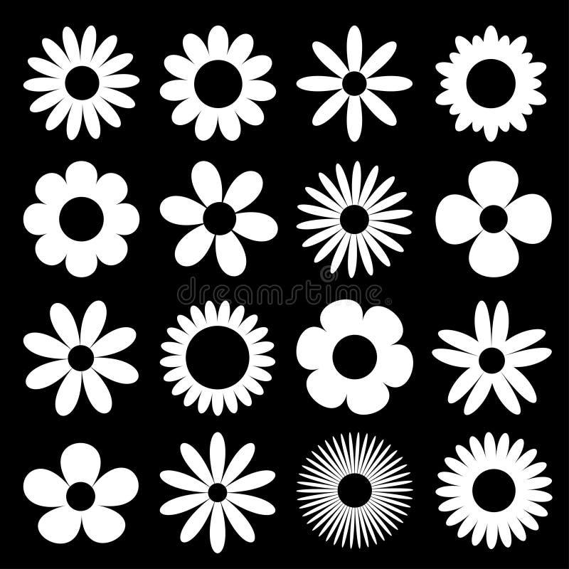 Значок силуэта стоцвета белой маргаритки Набор стоцвета супер большой Милое круглое собрание завода головы цветка Символ карты лю иллюстрация вектора