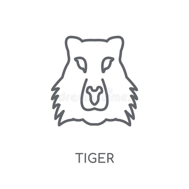 Значок тигра линейный Современная концепция логотипа тигра плана на белом ба иллюстрация штока