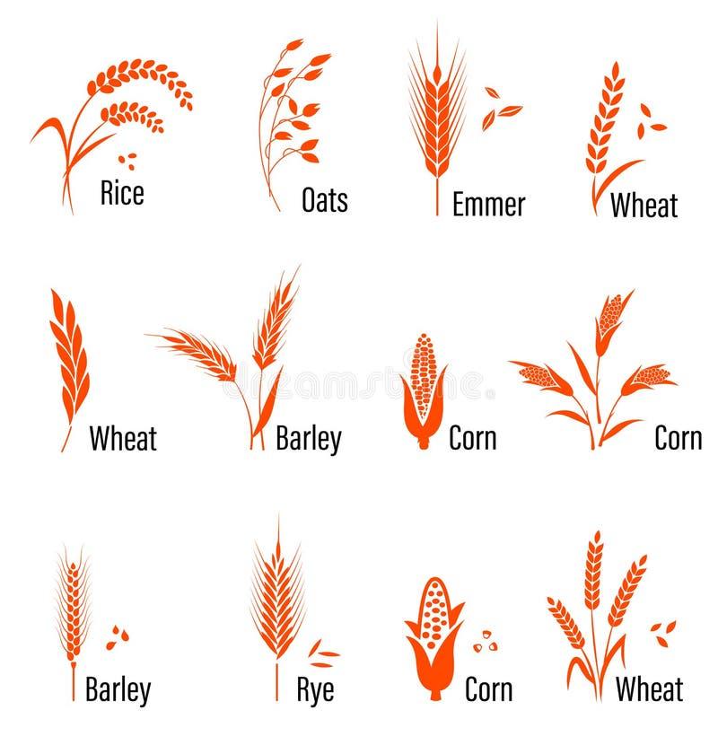 Значок хлопьев установленный с пшеницей иллюстрация штока