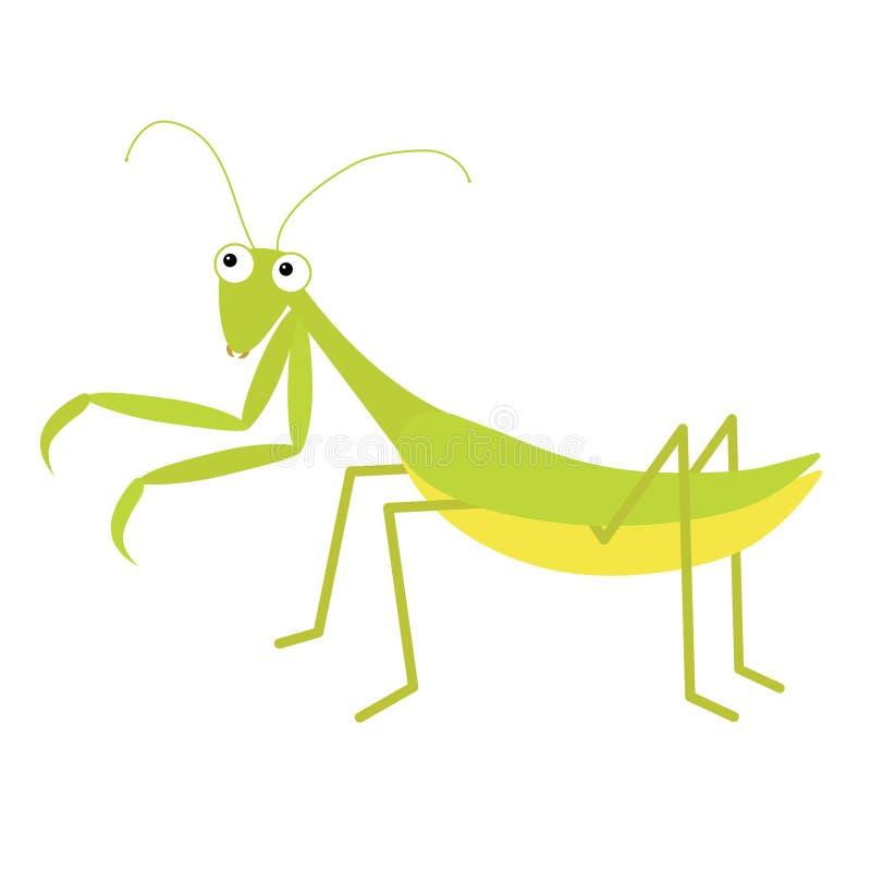 Значок Mantis r Зеленое изолированное насекомое Моля mantid Большие глаза r r Младенец иллюстрация вектора