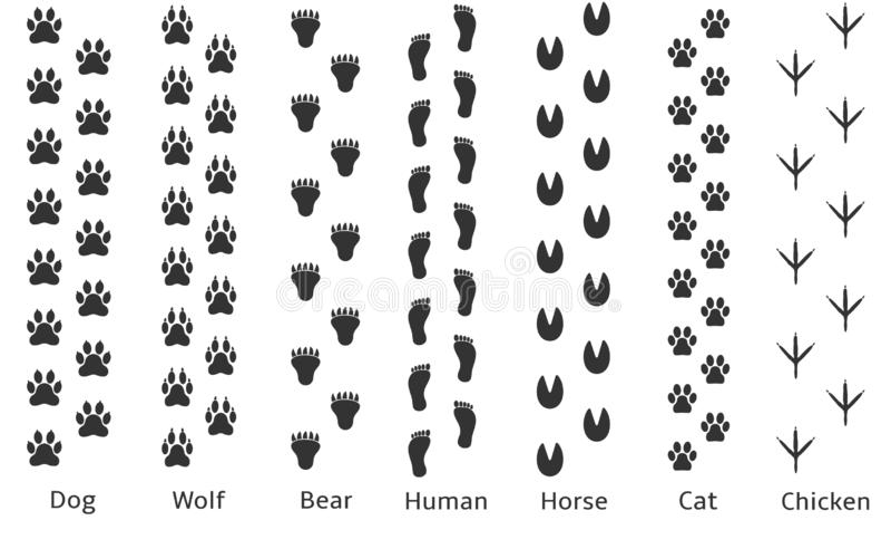 Значок Paw print иллюстрация вектора