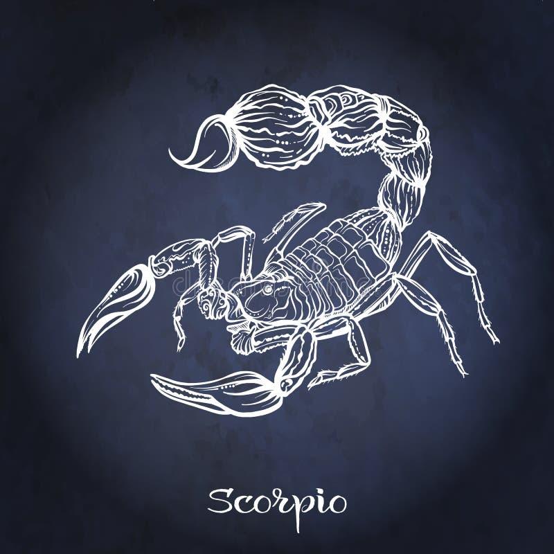 зодиак символов 12 знака конструкции произведений искысства различный Астрологическое собрание гороскопа также вектор иллюстрации бесплатная иллюстрация