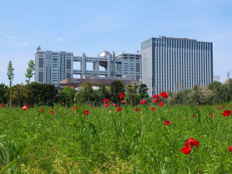 Зодчество Токио самомоднейшее стоковое фото
