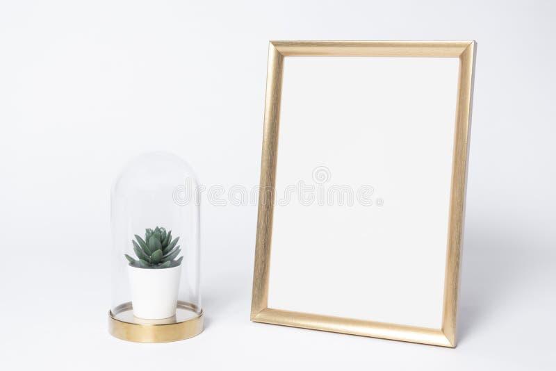 Золотая насмешка рамки фото вверх и элементы дома оформления интерьера кактуса стоковые изображения