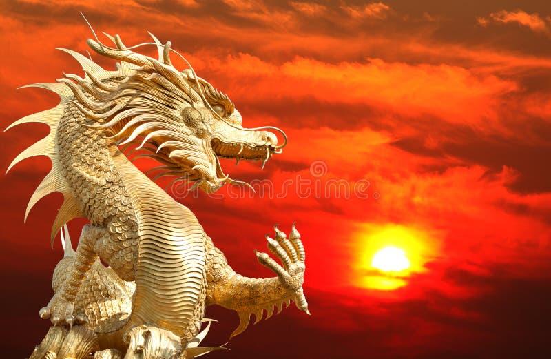 золотистое китайского дракона гигантское стоковые изображения rf