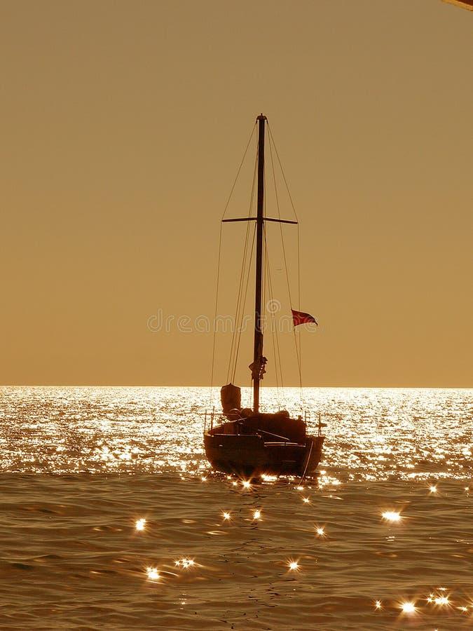 золотистое утро стоковое изображение