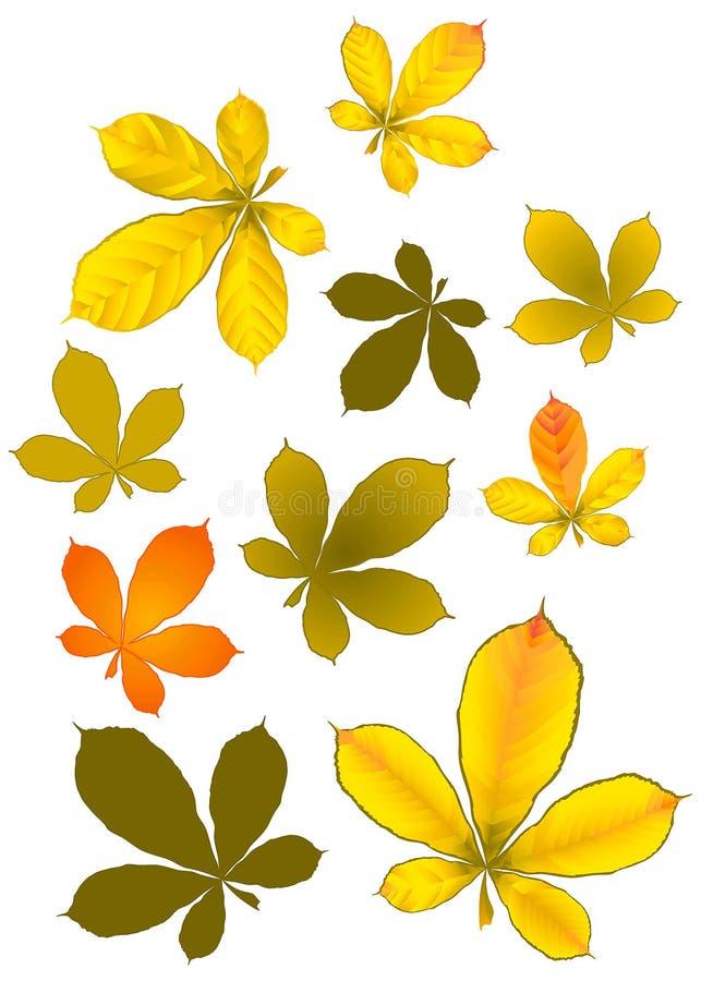 золотистые листья стоковые фотографии rf