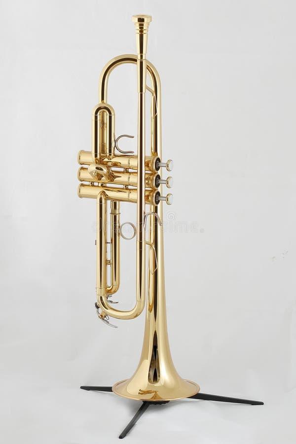 золотистый trumpet стоковое фото