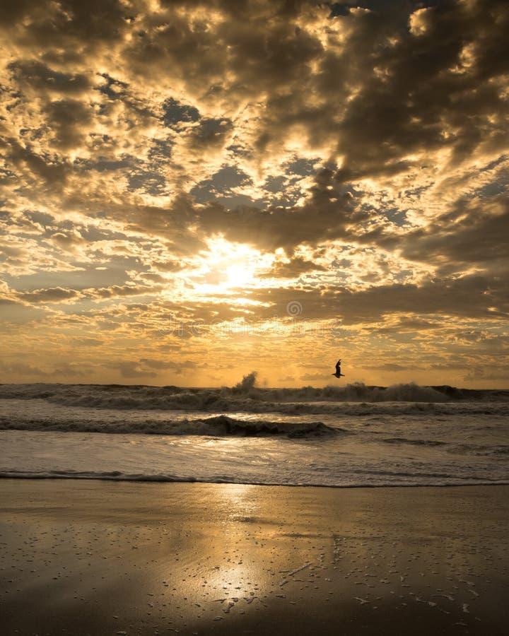 Золотое бурное небо стоковая фотография rf