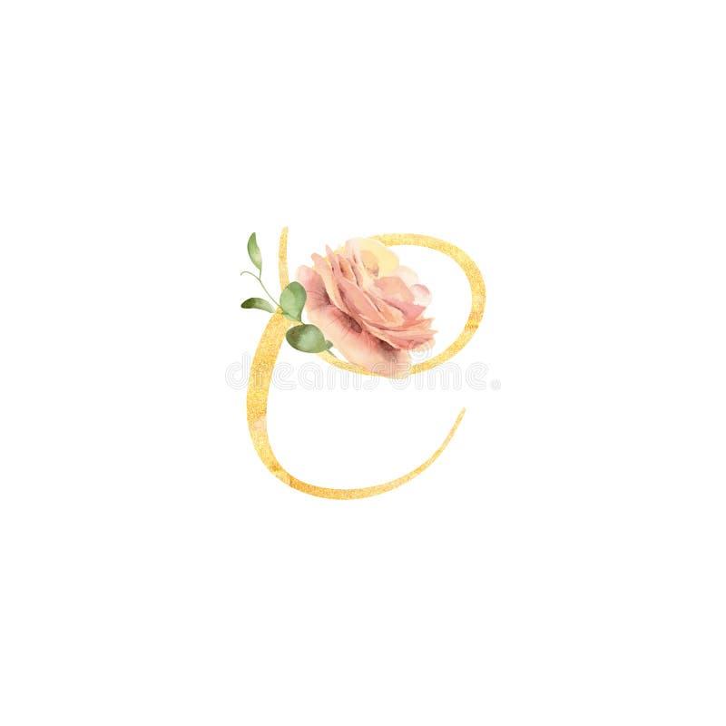 Золотое письмо c украшенное с рукой покрасило лютик цветка акварели иллюстрация вектора