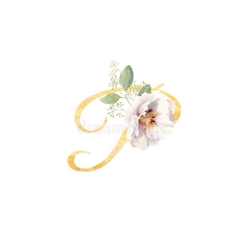 Золотое письмо p украшенное с рукой покрасило пион цветка акварели бесплатная иллюстрация