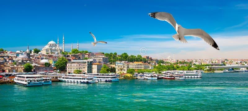 Золотой залив рожка Стамбула стоковое фото