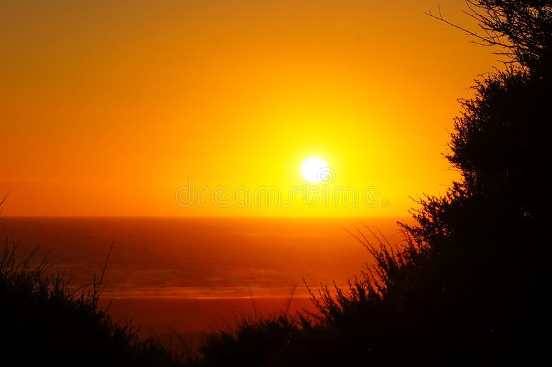 Золотой заход солнца часа на пляже/Новой Зеландии Piha стоковое изображение rf