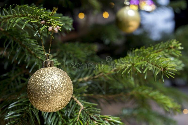 Золотой шарик рождества яркого блеска на рождественской елке с запачканной предпосылкой стоковая фотография rf