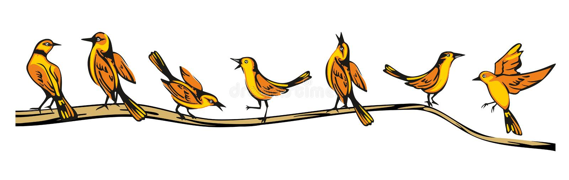 Золотой Oriolе садился на насест в различных представлениях на ветвь Иллюстрация вектора плоская иллюстрация вектора