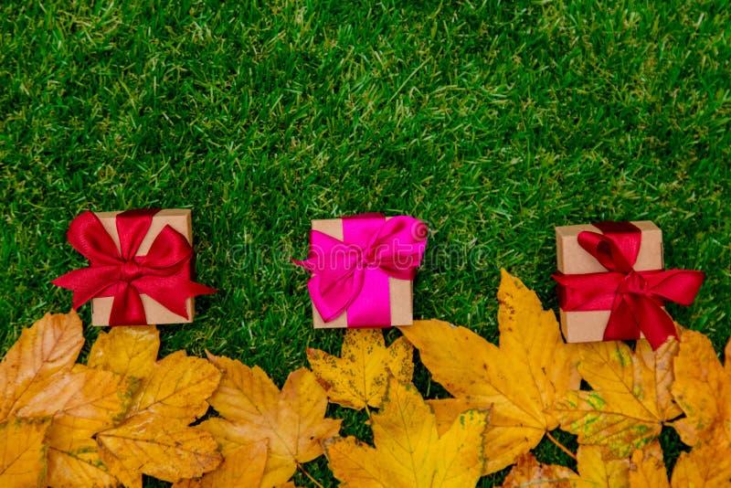 Золотые кленовые листы и подарочные коробки осени стоковое изображение rf