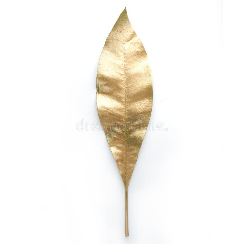 Золотые элементы дизайна лист Элементы для приглашения, карточки украшения свадьбы, день валентинок, поздравительные открытки Изо стоковое изображение rf
