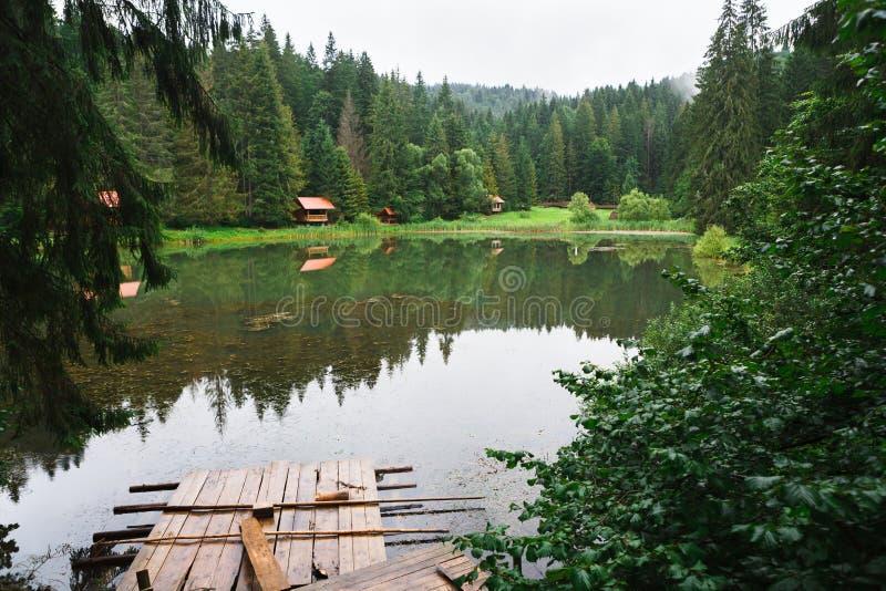 Зона воссоздания на озере леса, ненастной погоде стоковое изображение rf