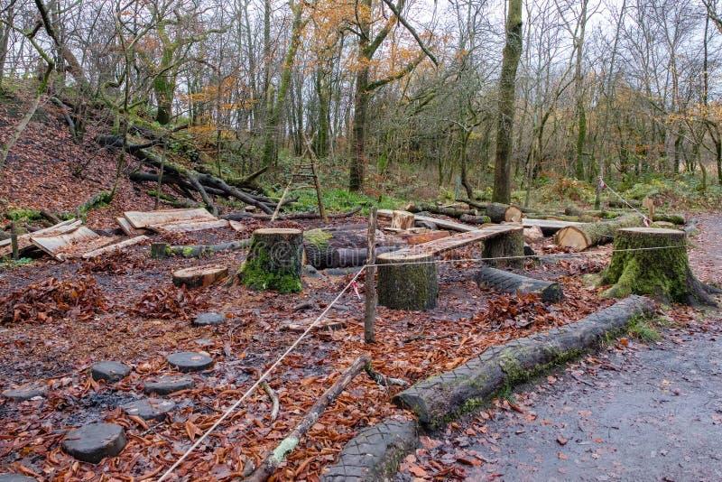 Зона вырезывания и обслуживания дерева в Scotlands Forrests стоковое фото