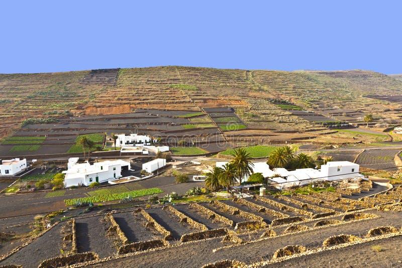 Download Зона культивирования террасы в Лансароте Стоковое Изображение - изображение насчитывающей урожай, ahmad: 40588415
