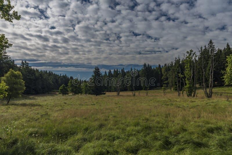 Зона около весны Novoveska в национальном парке les Slavkovsky стоковые изображения rf