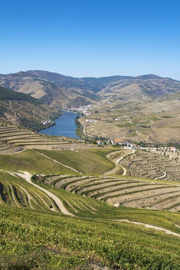 зона douro стоковое фото rf