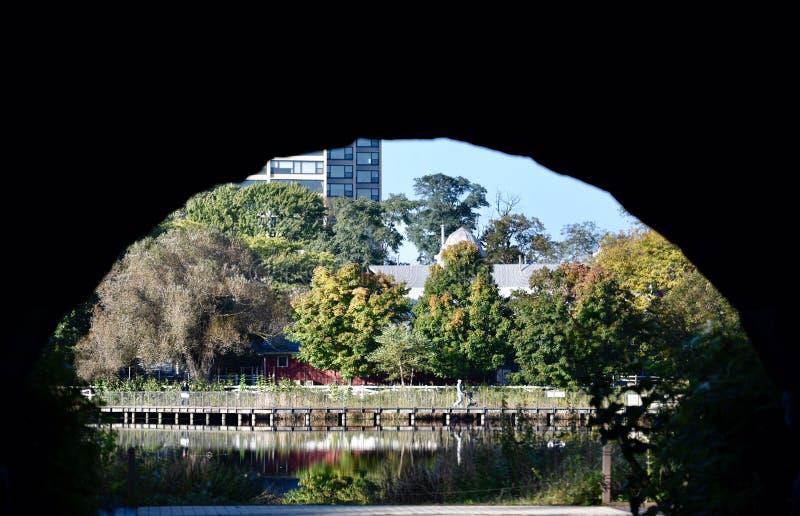 Зона toNature входа аркы стоковая фотография rf
