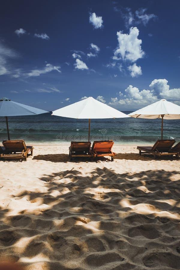 Зонтики вдоль пляжа стоковое изображение