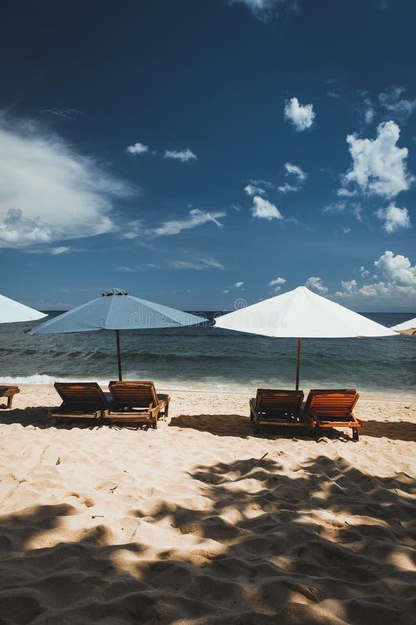 Зонтики вдоль пляжа стоковое изображение rf