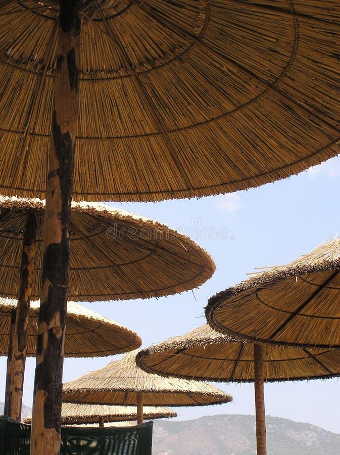 Download зонтики пляжа стоковое фото. изображение насчитывающей картина - 479094