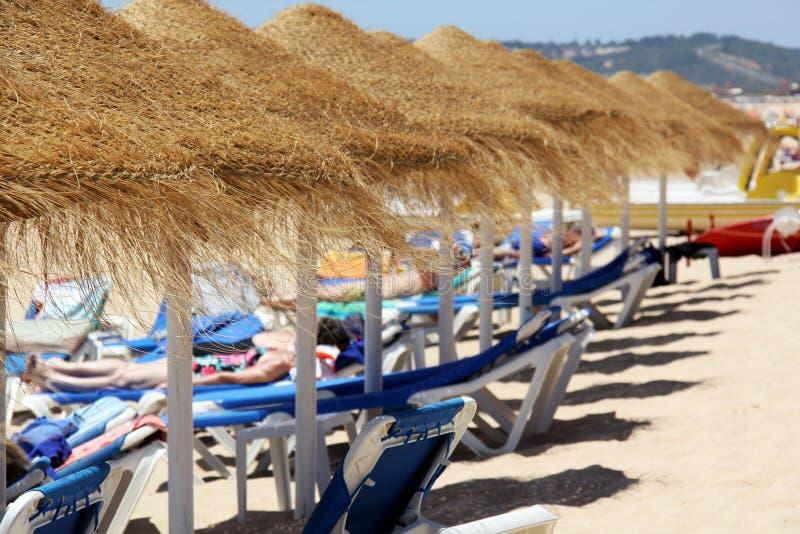 Зонтики сторновки на пляже стоковое фото