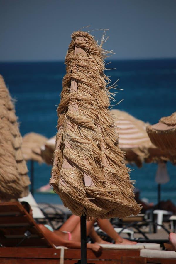 Зонтик в ветре стоковая фотография rf