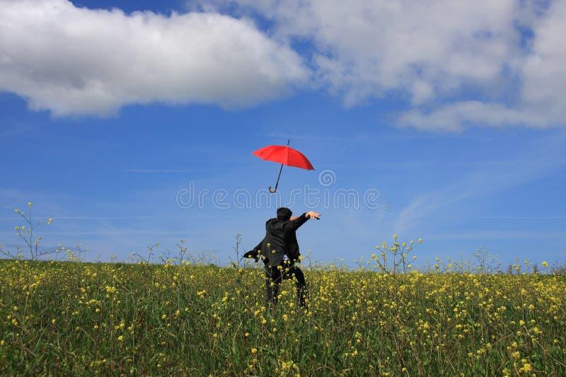 зонтик летания стоковые изображения